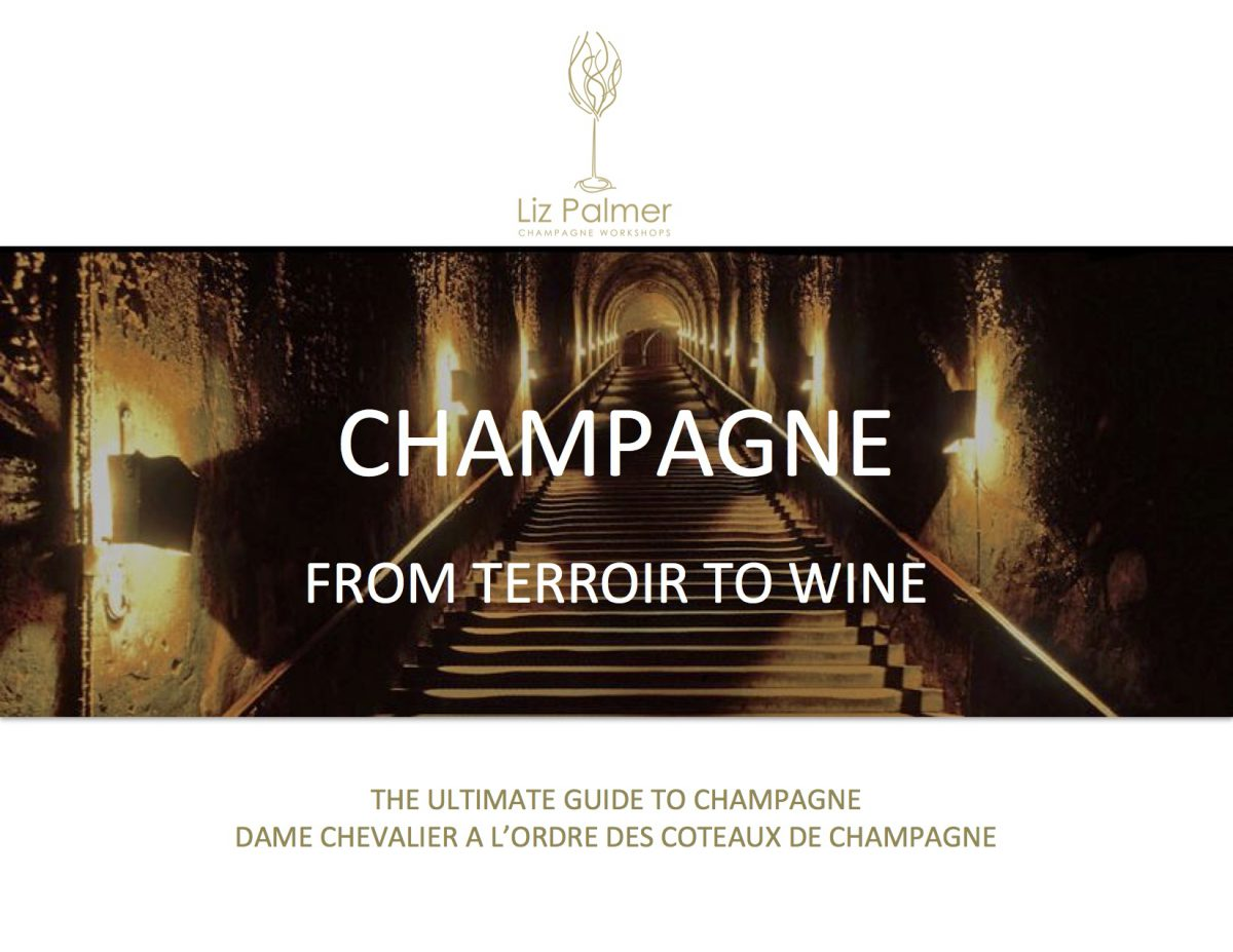 Toronto Champagne Workshop:  From Terroir to Wine