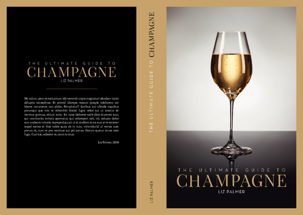 The Ultimate Guide To Champagne – Book Award Updates!