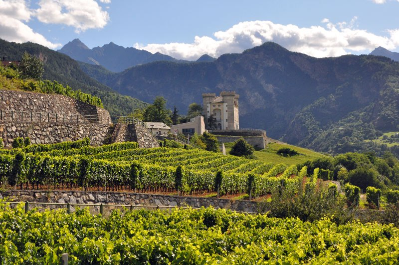 Italy is named the world's best wine country