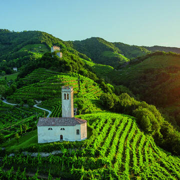 Prosecco receives UNESCO World Heritage status