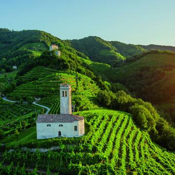 Prosecco receives UNESCO World Heritage status