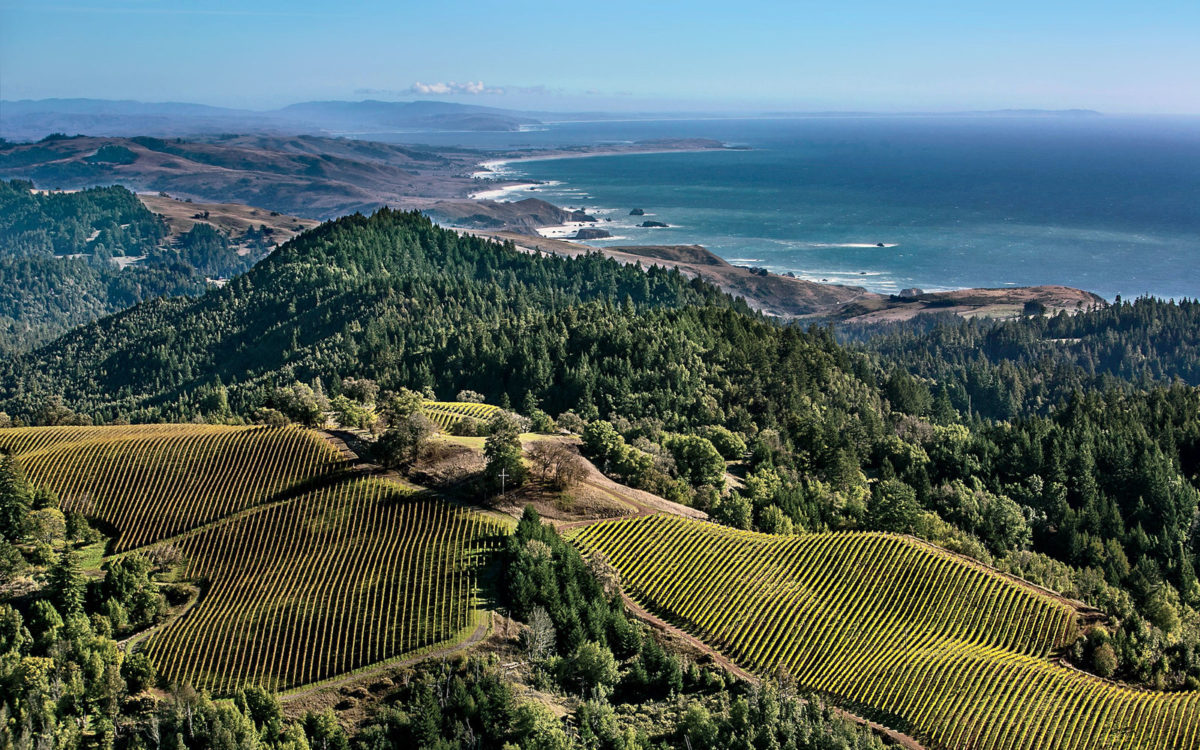 The Top Ten Winegrowers in Sonoma, California by Acreage