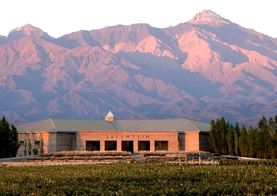Geographic Indication Approved for San Pablo, A High-Altitude Mendoza Sub-Region