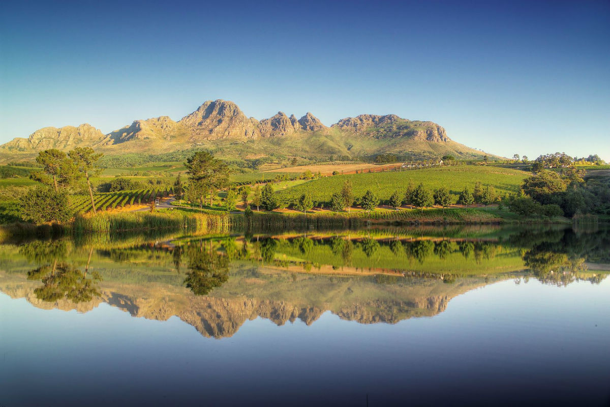 The South African wine industry commits to sustainability