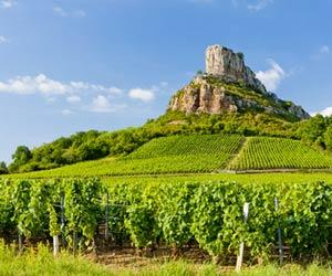 Pouilly-Fuissé gets 22 premier cru vineyards