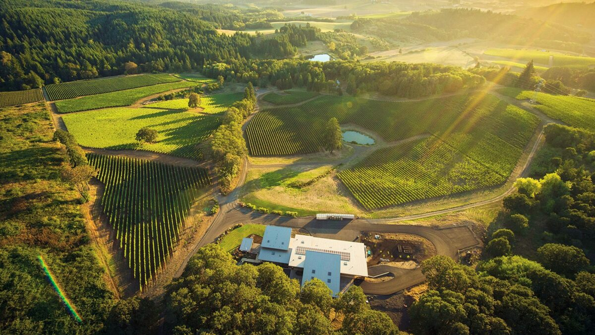 Seven Oregon Pinot Noirs Make Wine Spectator's Top 100 List
