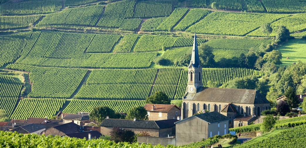 Wine News: Bourgogne wines held up on the International Market in 2020