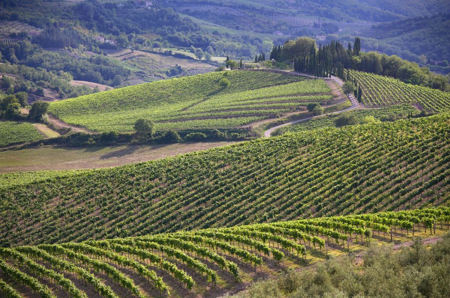 New Chianti Classico subzones or 'UGAs' have been approved