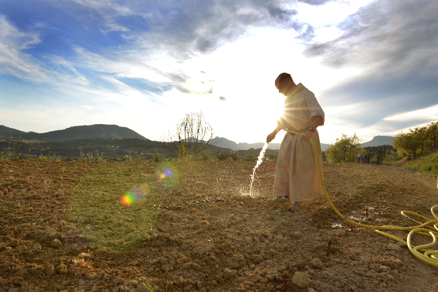 Monks of France's First Papal Vineyard Sell Wine to Support the Community