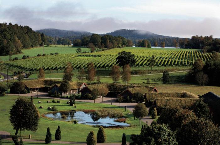 Swedish wine growers establish a new industry association