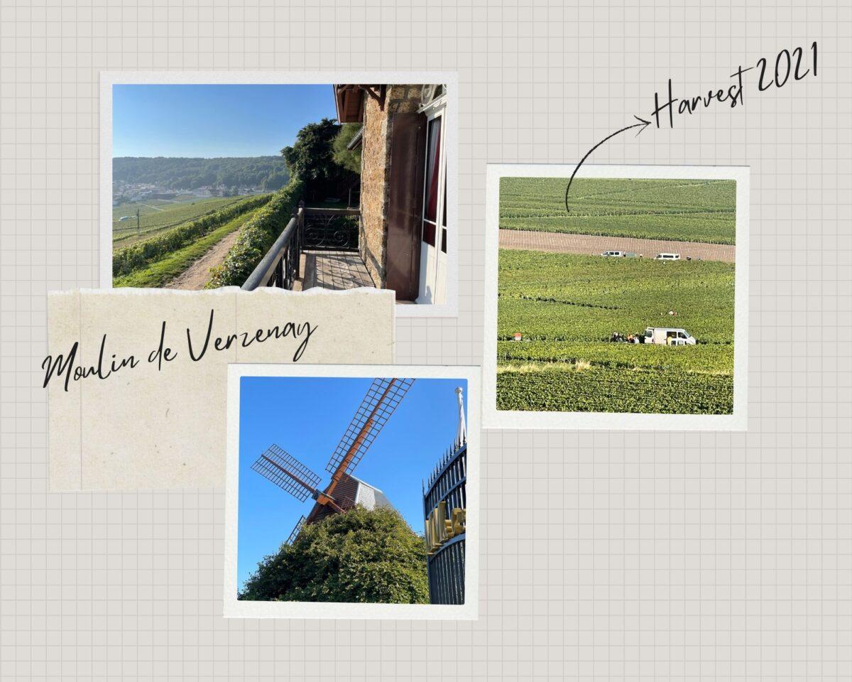 Some more photos of my visit to Moulin de Verzenay