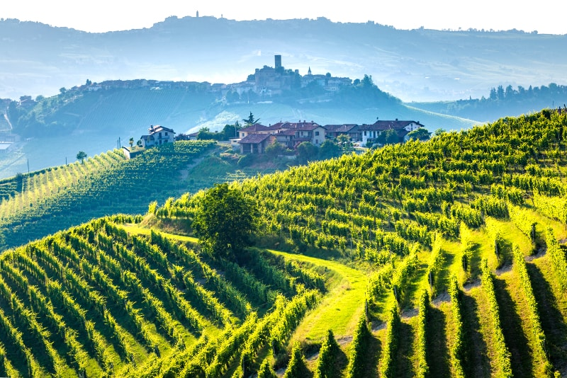 Italy Becomes 'Dominant Force' on the Fine Wine Market